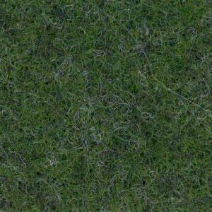 Forest Green carpet